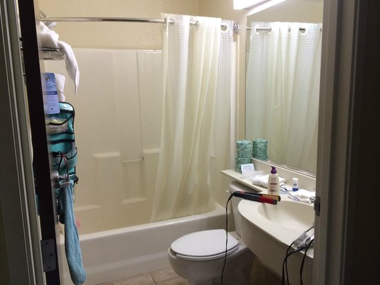 Microtel Inn & Suites by Wyndham Bushnell : Bathroom area (the give you little Pantene bottles).