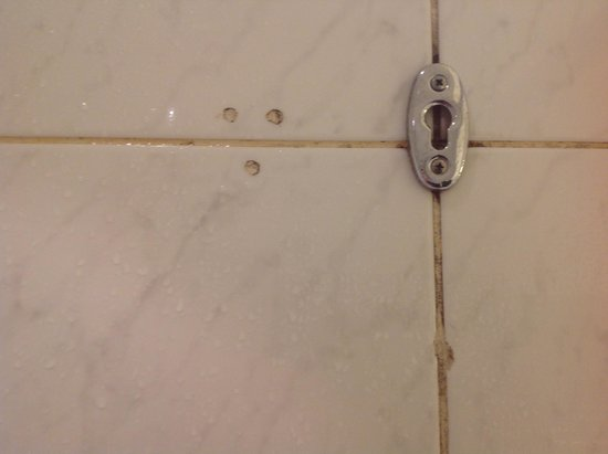 The Westin Paris - Vendome: mold in shower didnt get there overnight!