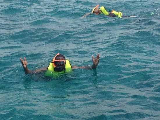 Sandals Grande Antigua Resort & Spa: Snorkeling