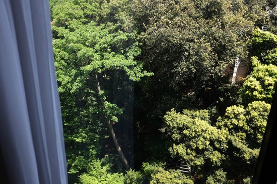 Sheraton Miyako Hotel Tokyo: The park here is epic - you can get a better view from the restaurant