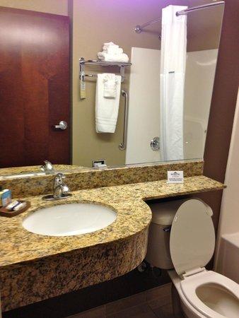 Microtel Inn & Suites by Wyndham Triadelphia/wheeling : Bathroom