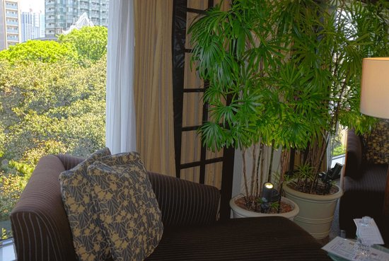 Sheraton Miyako Hotel Tokyo: Couch for relaxation ... with a nice view