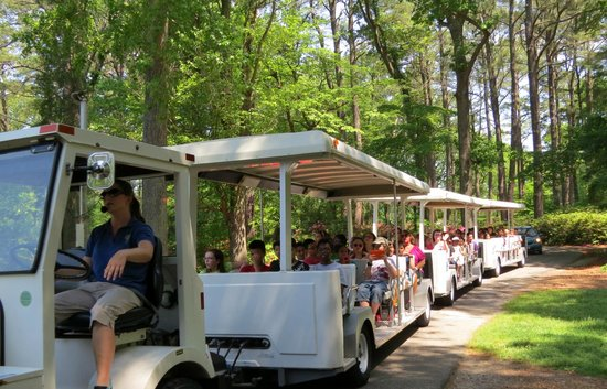 Norfolk Botanical Garden : take tram through park