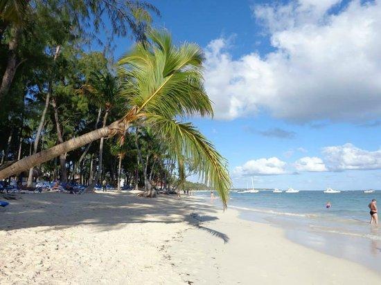Vista Sol Punta Cana: Praia