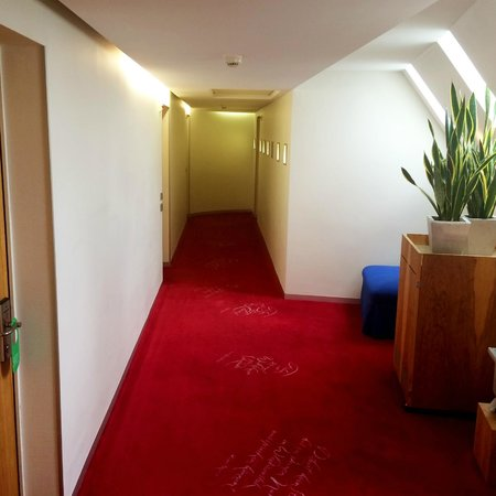 Hotel du Theatre by Fassbind : Hallway