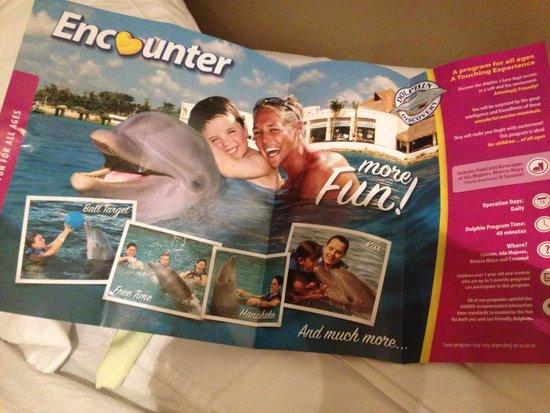Dolphin Discovery Isla Mujeres: Brochure