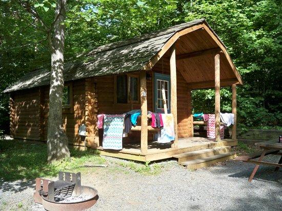 Charlottesville KOA: Camping Cabin