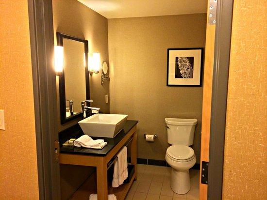 Cambria Hotel & Suites Rapid City: Bathroom