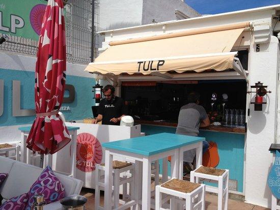 Tulipan: Nico on the decks