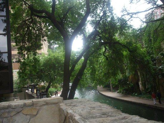 Holiday Inn San Antonio Riverwalk: View from the Hotel Bodego
