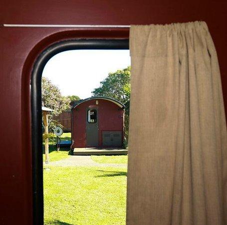 Solscape: through the caboose window