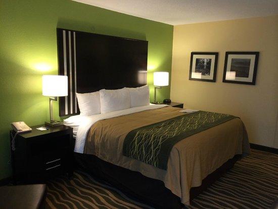 Comfort Inn : King Sized Room