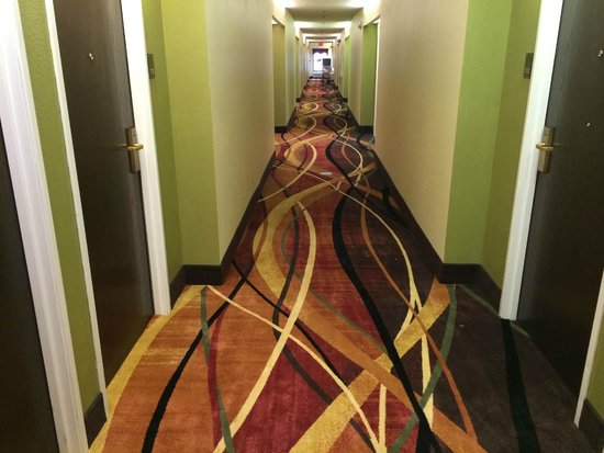 Comfort Inn: New Hallway Carpet