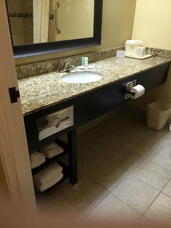 Comfort Inn : New Bathroom