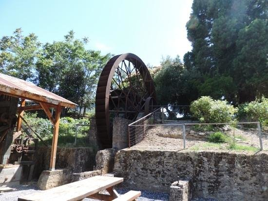 Angels Camp Museum and Carriage House : Water wheel in all its glory