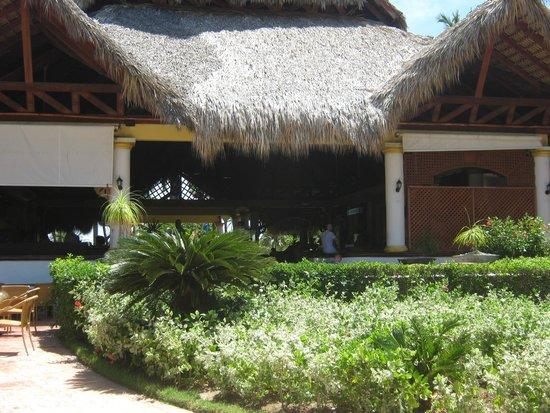 VIK Hotel Arena Blanca: recepcion del hotel