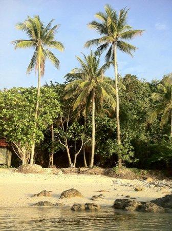 turkeys picture of sibu island resort mersing tripadvisor rh tripadvisor com sg