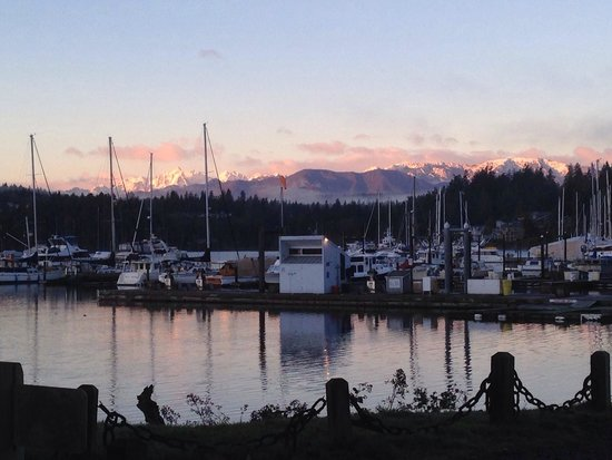 The Resort at Port Ludlow : Watching the sun set over the Olympics is breathtaking!