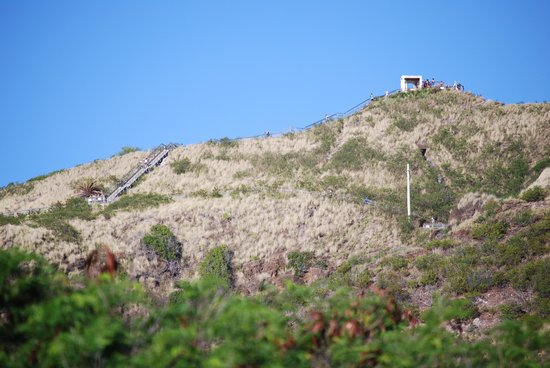 Diamond Head: View from parking lot