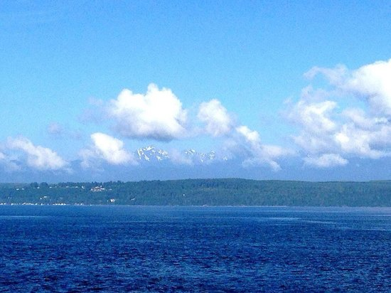 I love to cross the Hood Canal Bridge on the way to Port Ludlow. The Olympic mountains, seals an