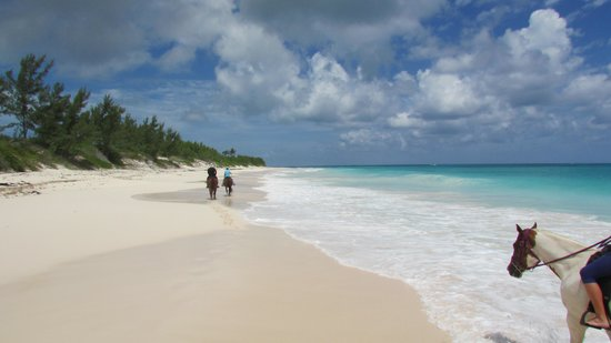 The Tranquil Pink And White Sands Of Eleuthera