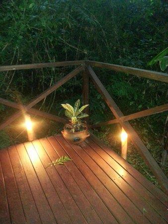Tierra Guarani Lodge: todo naturaleza