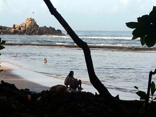 Barberyn Reef Ayurveda Resort: Beruwala Beach