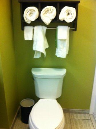 Hampton Inn & Suites Buffalo Airport: bathroom