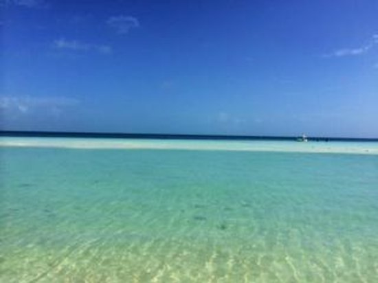 Presidente InterContinental Cancun Resort: Beach