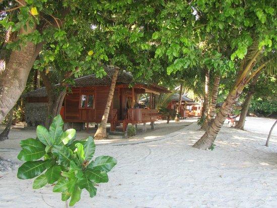 Blue Bay Divers: die Hütten auf der Insel