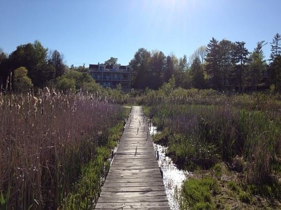 Blacksmith Inn On the Shore: Taken from the dock, looking back at the Zahn House.