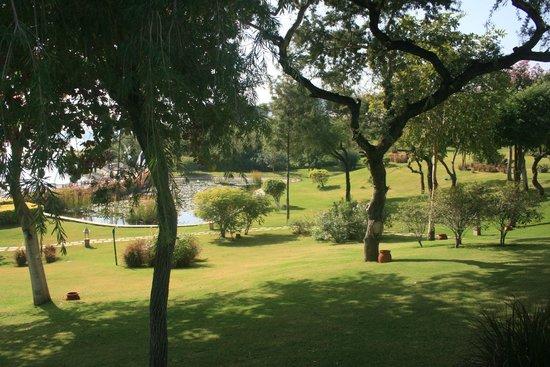 The Oberoi Udaivilas: Amazing views
