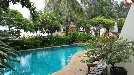 Wabi-Sabi Layalina X'Clusive Beachfront Boutique Resort Phuket : Pool area (veew from Deluxe room)