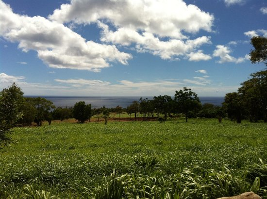Happy Trails Hawaii : Outstanding view