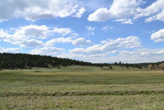 Florissant Fossil Beds National Monument : A lovely June afternoon