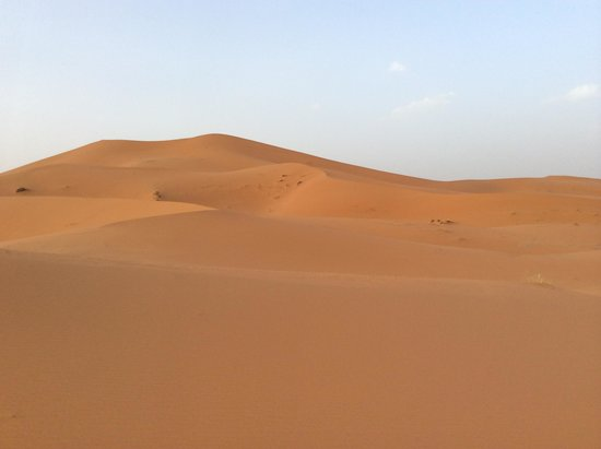 Go Sahara Tours: desert: just arruved