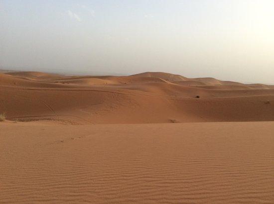 Go Sahara Tours: desert