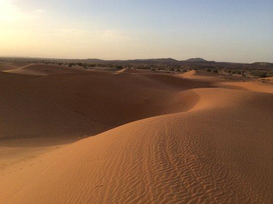 Go Sahara Tours: desert: after sunrise