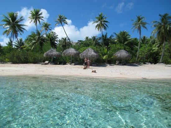 Tikehau Ninamu Resort: The beachfront at Ninamu