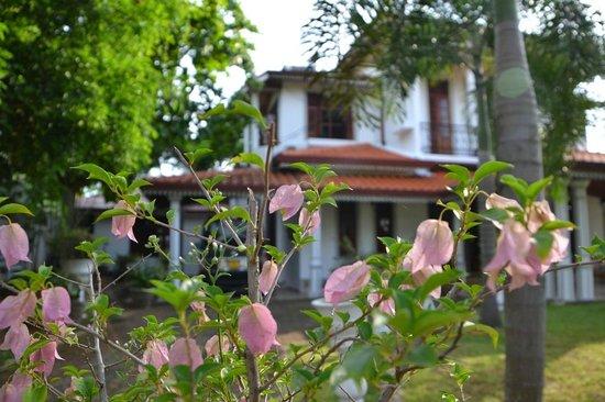 Ekala Retreat: Hotel from outside