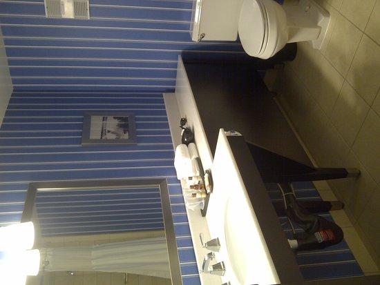Sheraton Bellevue : Bathroom - no storage