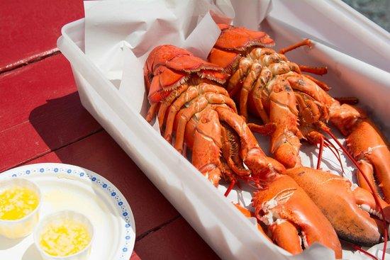 Ryer Lobsters: Yum!
