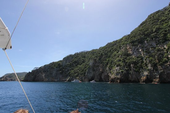 Dive Tutukaka: Dive spot was not crowded.