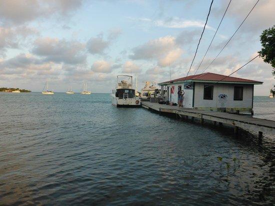 Placencia, Belize: Seahorse Dive Shop