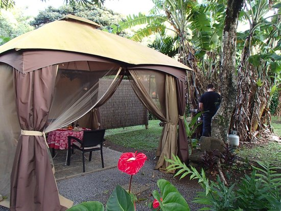 Windward Garden B&B: Outdoor gazebo and BBQ next to Studio