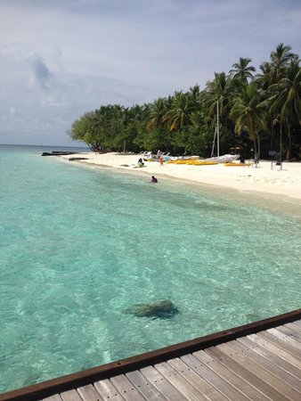 Vivanta by Taj Coral Reef Maldives: Beach