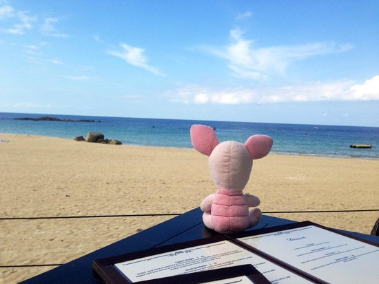 Bintan Lagoon Resort: Pinky the traveling pig loves her view of the sea