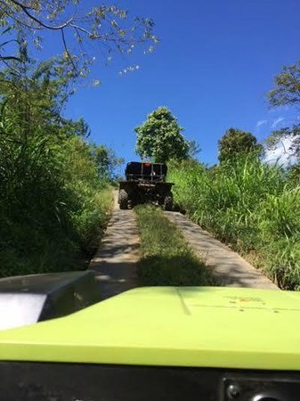 Munduk Wilderness - Day Tours: Following our guides