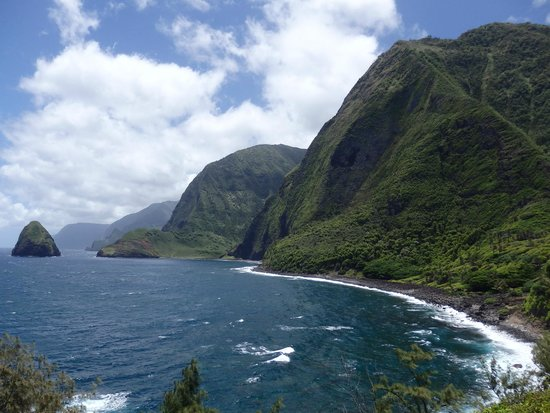 Molokai Mule Ride: Check out the magnificent cliffs while eating lunch!!
