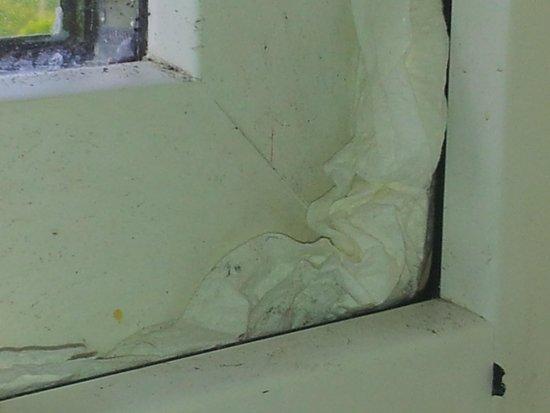 Doolin Holiday Homes : Children's bedroom window